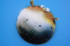 Finding-Nemo-10